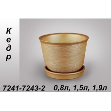 Кедр (худ) 0,8 -1,5-1,9 л.
