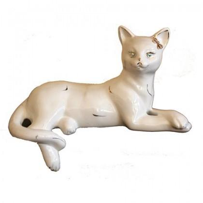 Агнесса (кошка)