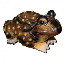 Жаба малая глянец  (28см*22см*17)