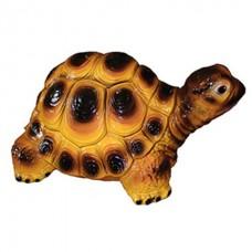 Черепаха Большая Глянец  (45 см × 60 см × 25)