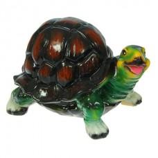 Черепаха малая глянец  (16*23*16)